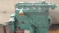 DAF 825 gereviseerde ruilrompmotor - Daf 825